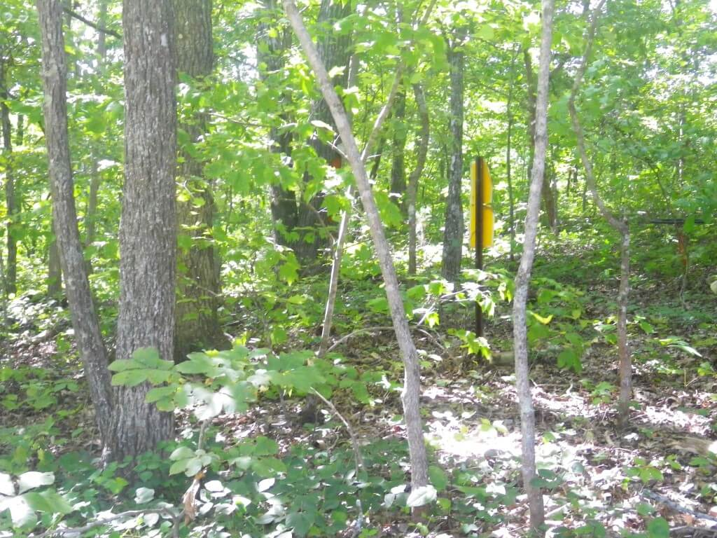 19 Acres Surveyed Land – Timber – Excellent Hunting