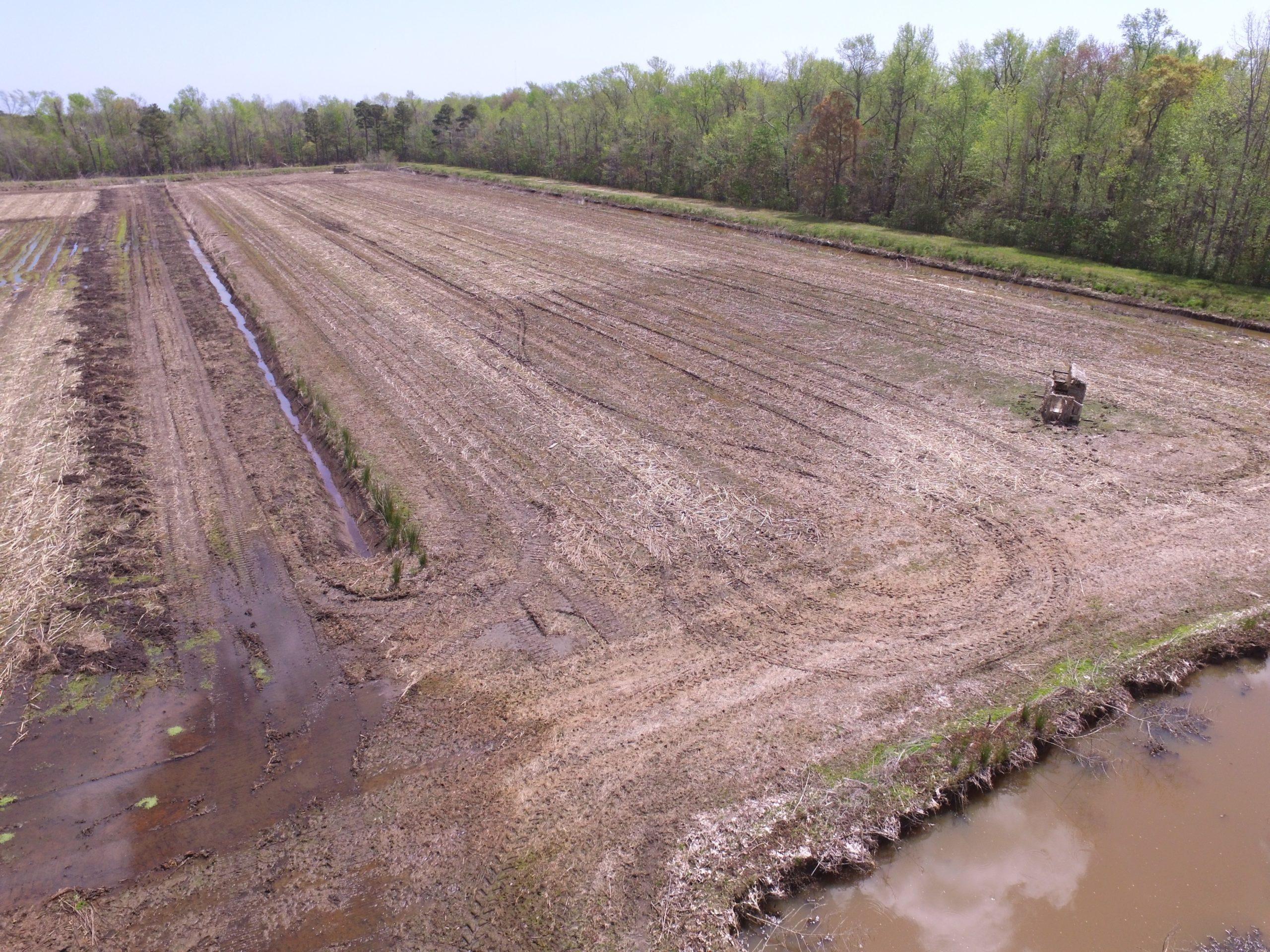 Waterfowl Impoundments / Farm Land for Sale