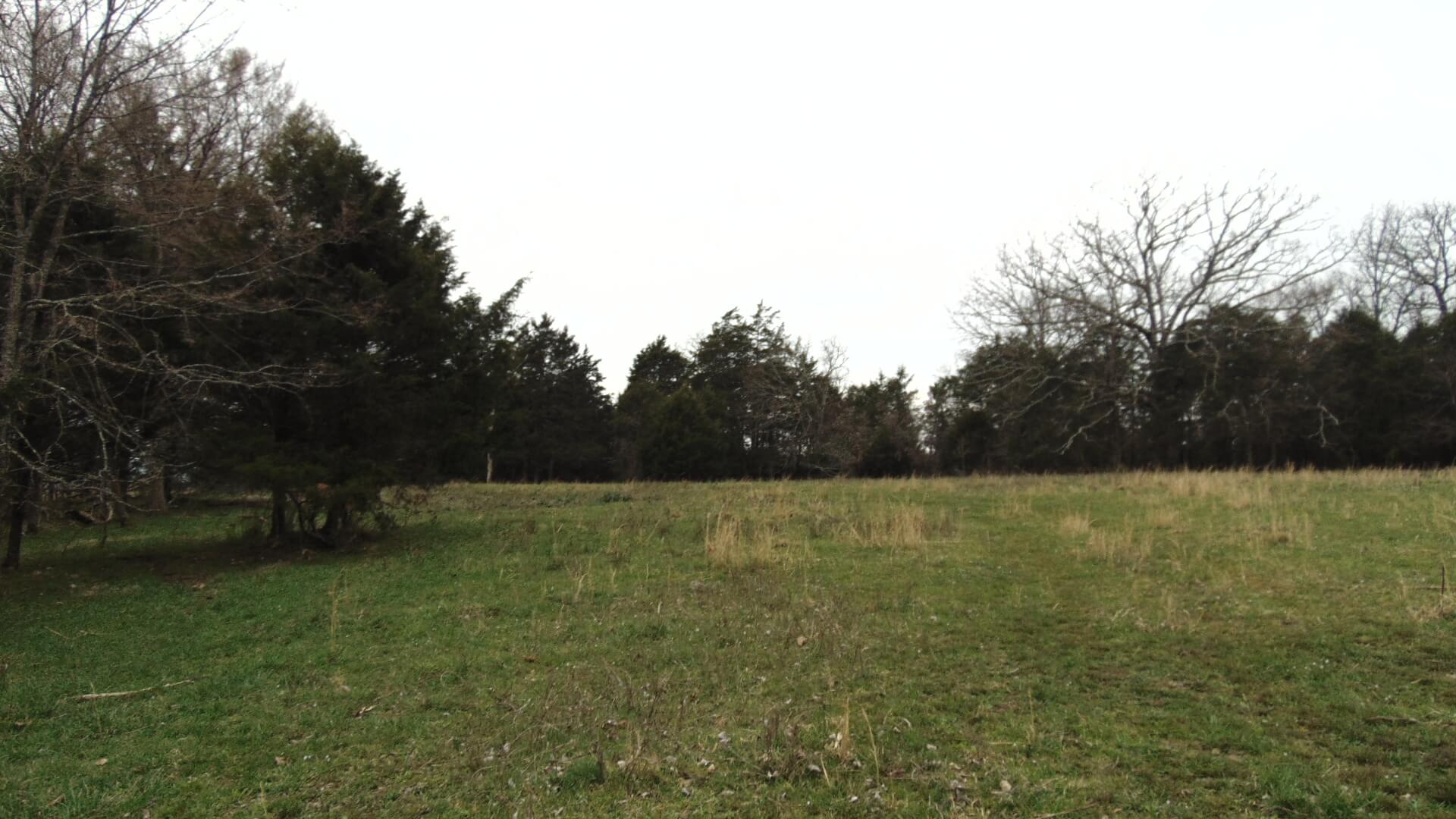 Southern Missouri Recreation and Livestock Land For Sale
