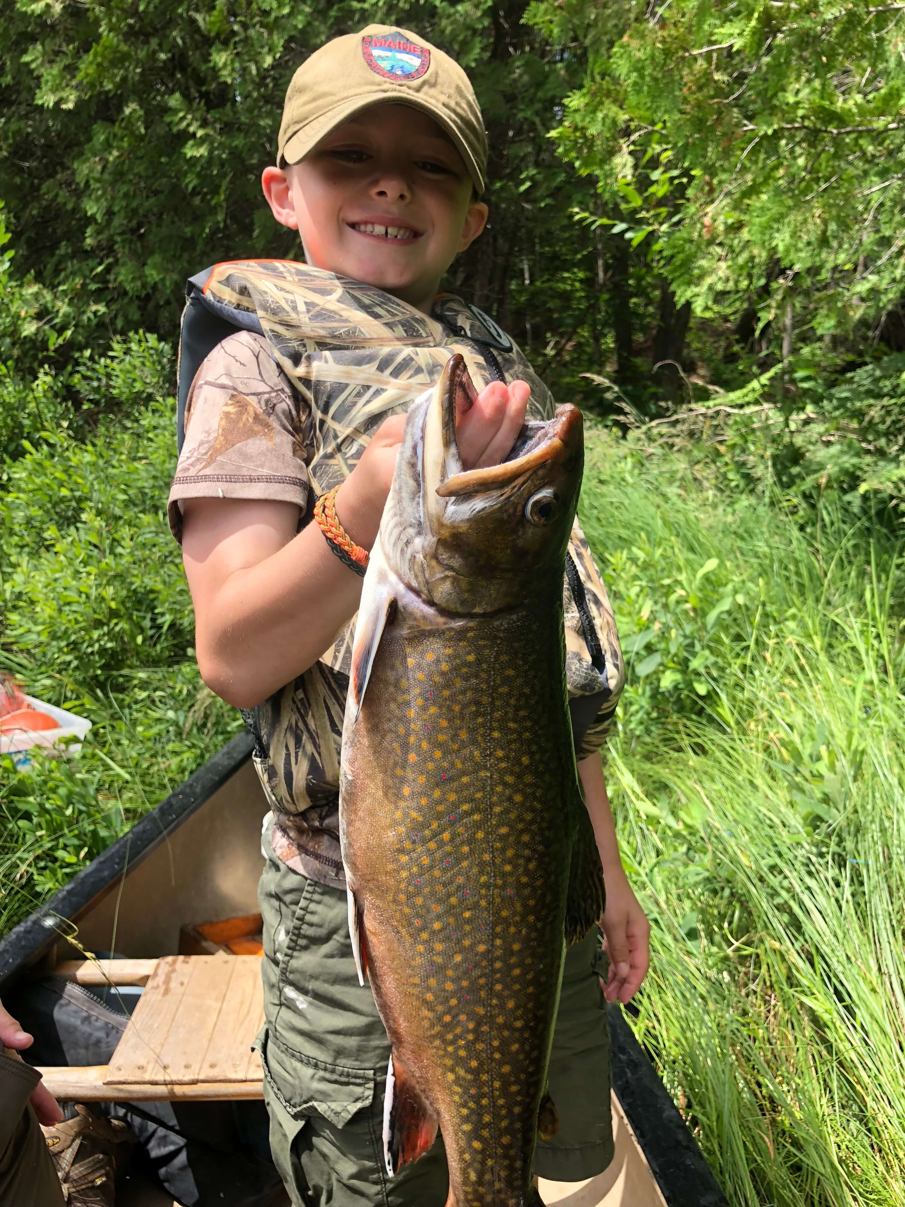 Maine Land Wild Trout Pond 534 acres For Sale