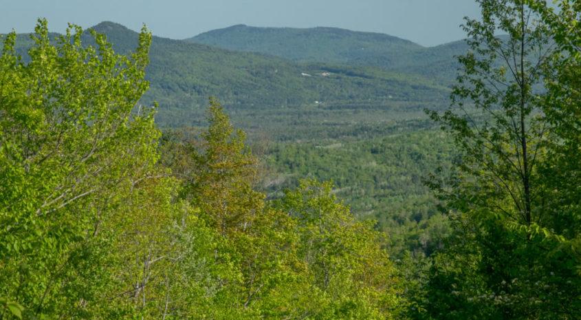 Weld 1125 acres-15