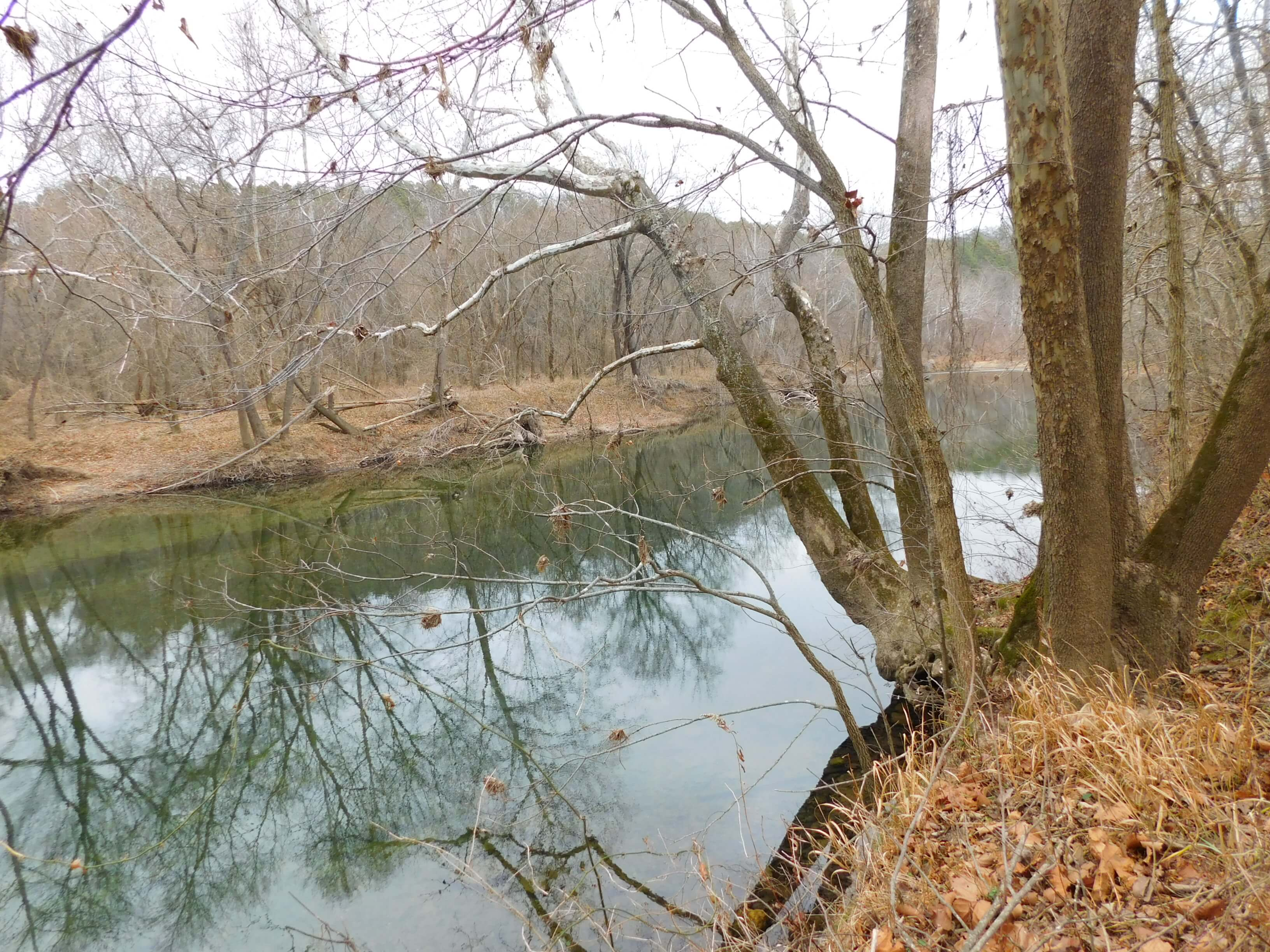 Large Acreage River Front Farm Bordering National Forrest