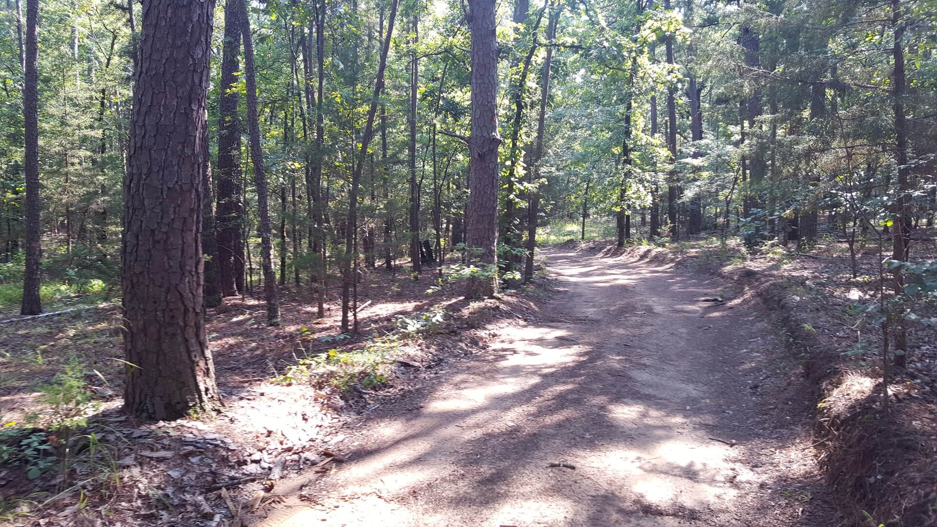 Kiamichi Wilderness Land for Sale | Southeast Oklahoma