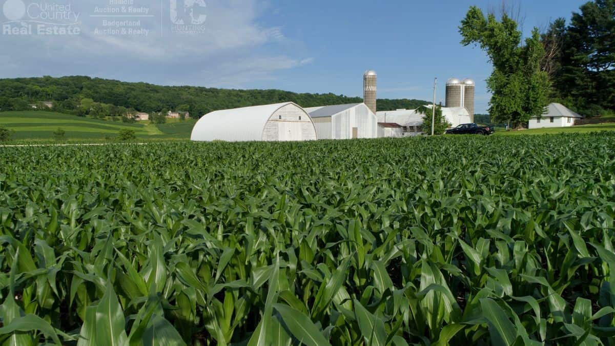 Investment Property with Farm Buildings in Southwest Wisconsin
