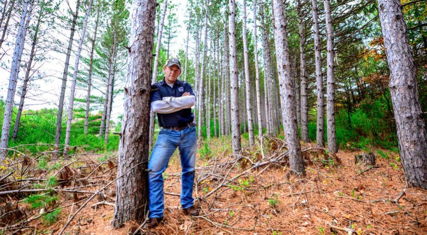 Timber Management on Hunting Lands