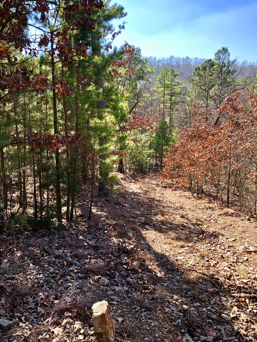 Oklahoma Hunting Land for Sale, Latimer County
