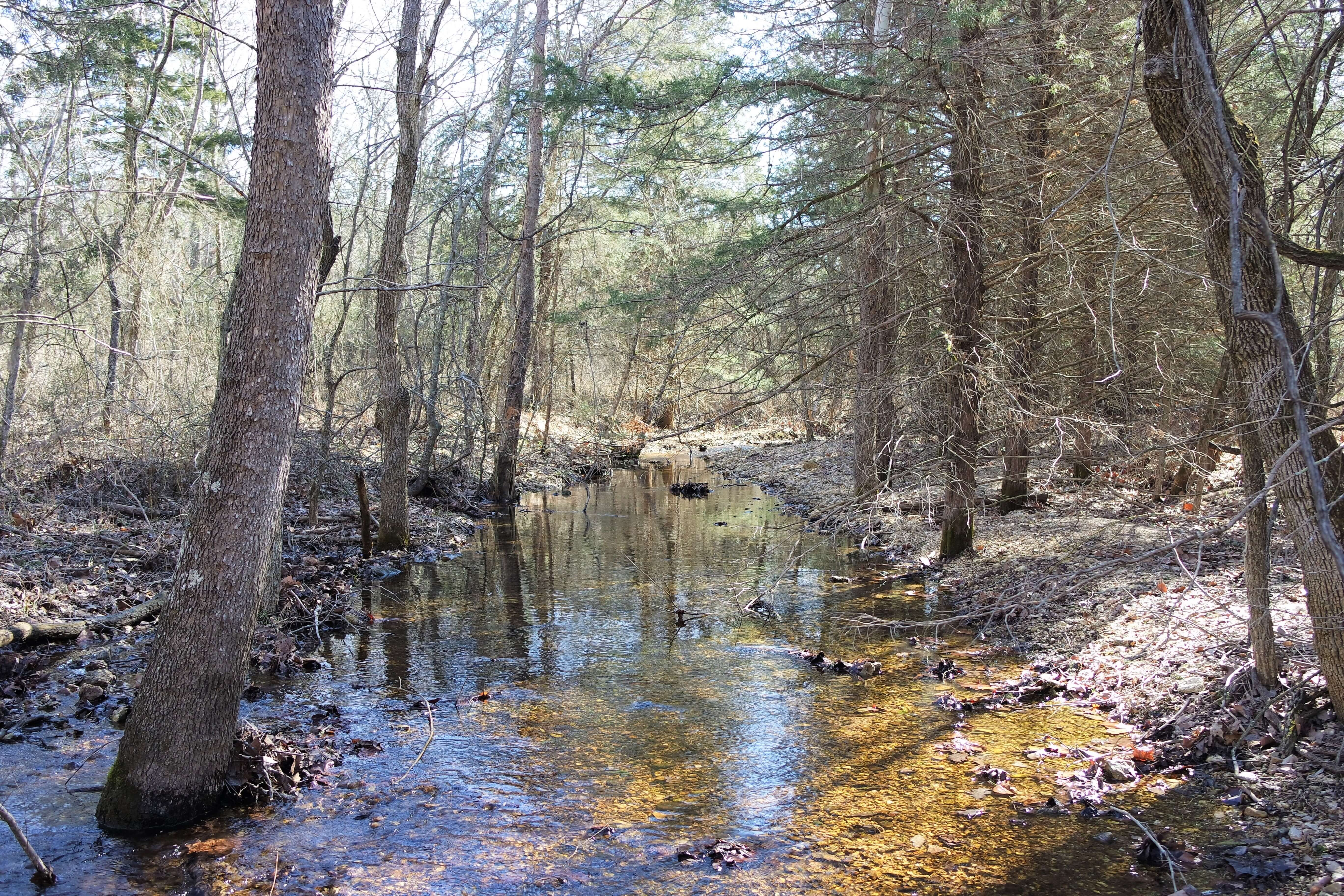 Hunting Property For Sale in South Central Missouri Ozarks