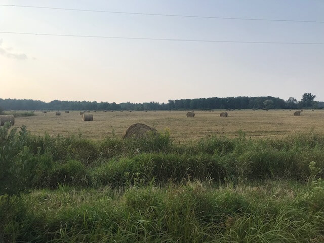 Actively Farmed 38.88 Acre Parcel in Clark County