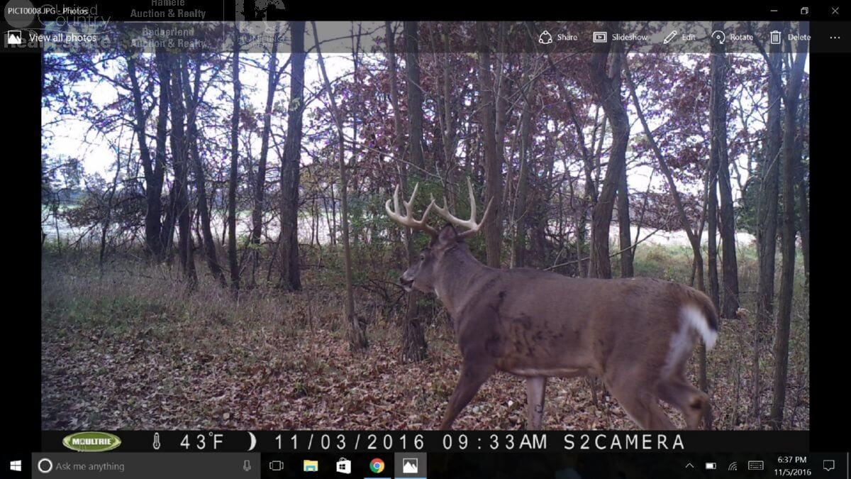 80 Acres of Quality Columbia County Hunting Land