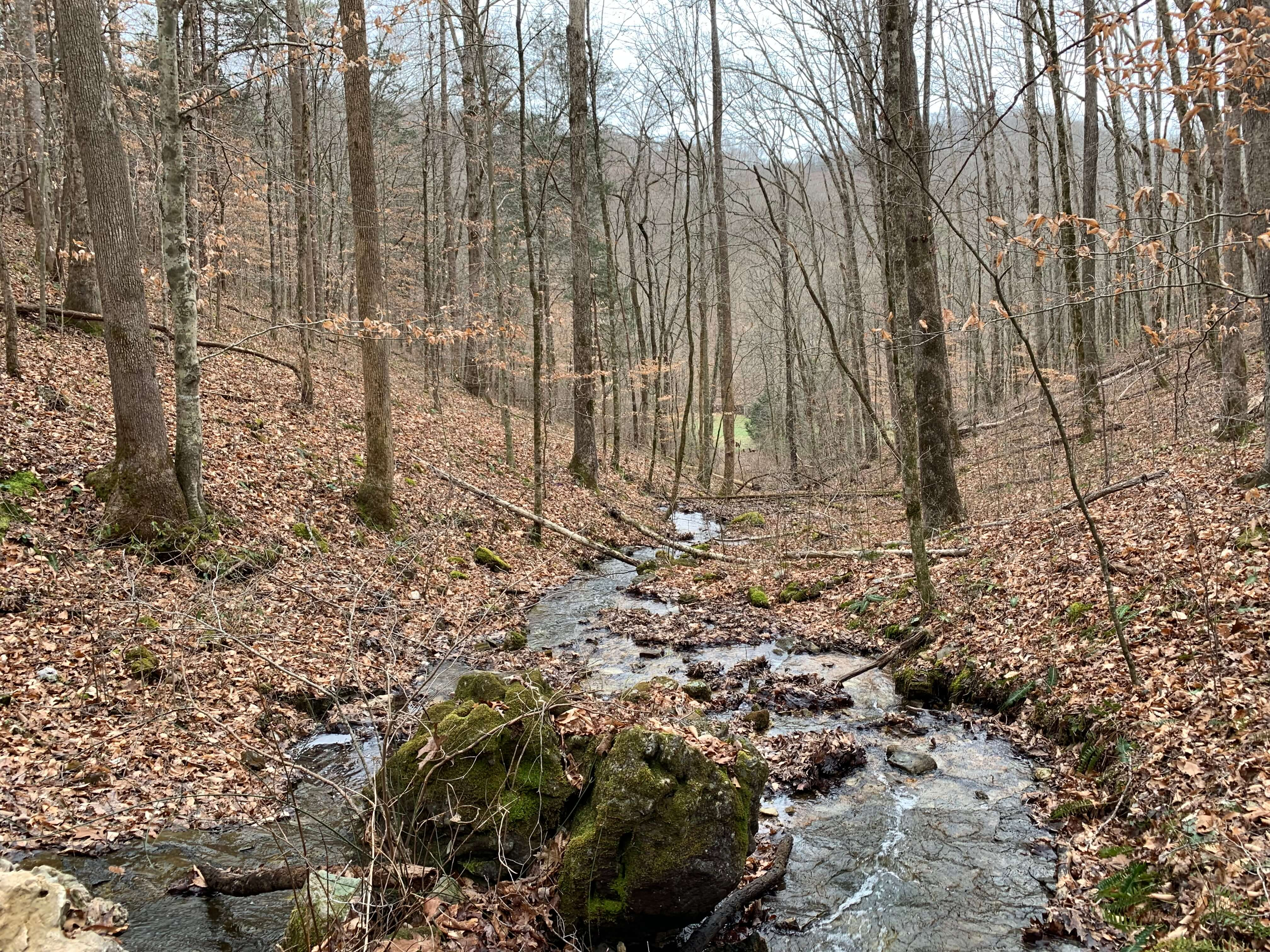 East Tennessee Recreational and Hunting Land Claiborne County
