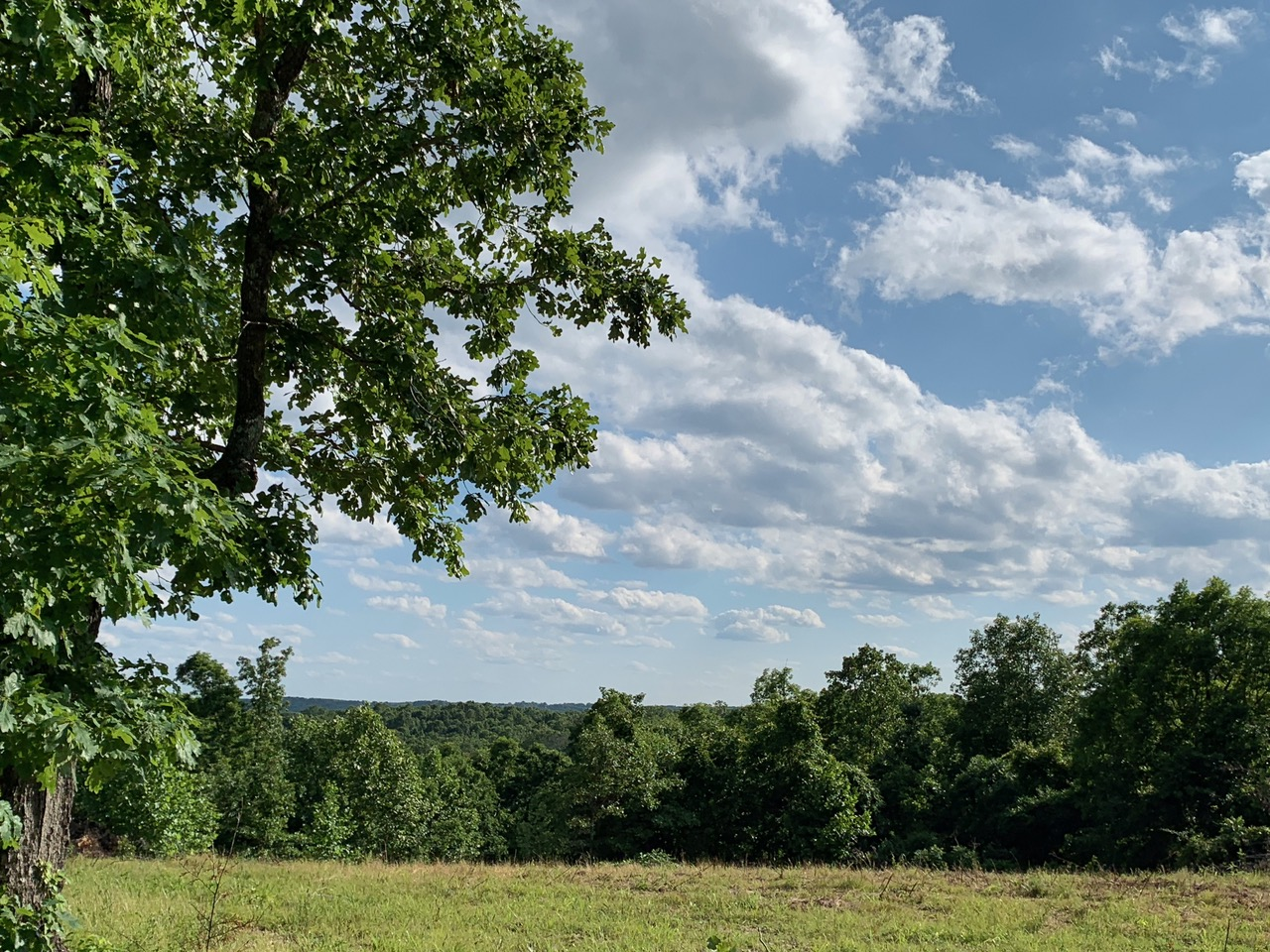 Hunting Land for Sale in Southern Missouri Ozarks