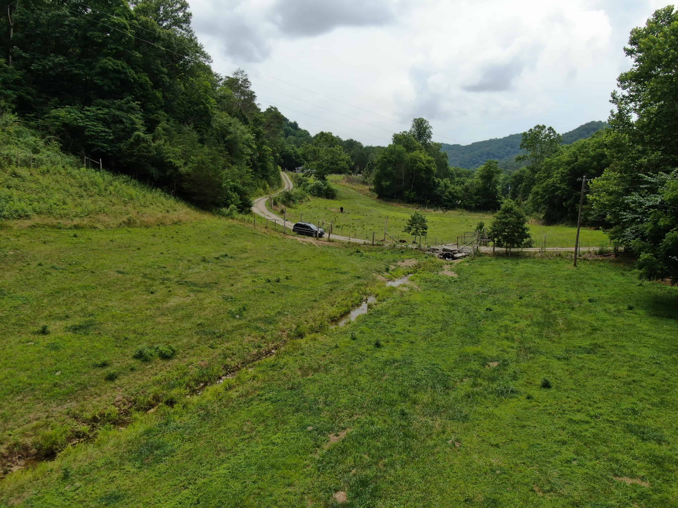 East Tennessee Woodland for Sale Grainger County- Thorn Hill