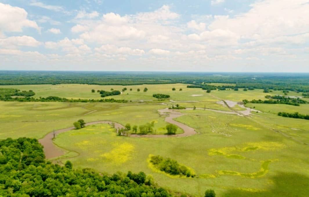 Large Cattle Ranch Hunting Land for Sale| Texas
