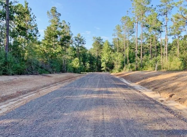 64.72 Acres Residential Development Land for Sale Sumrall MS