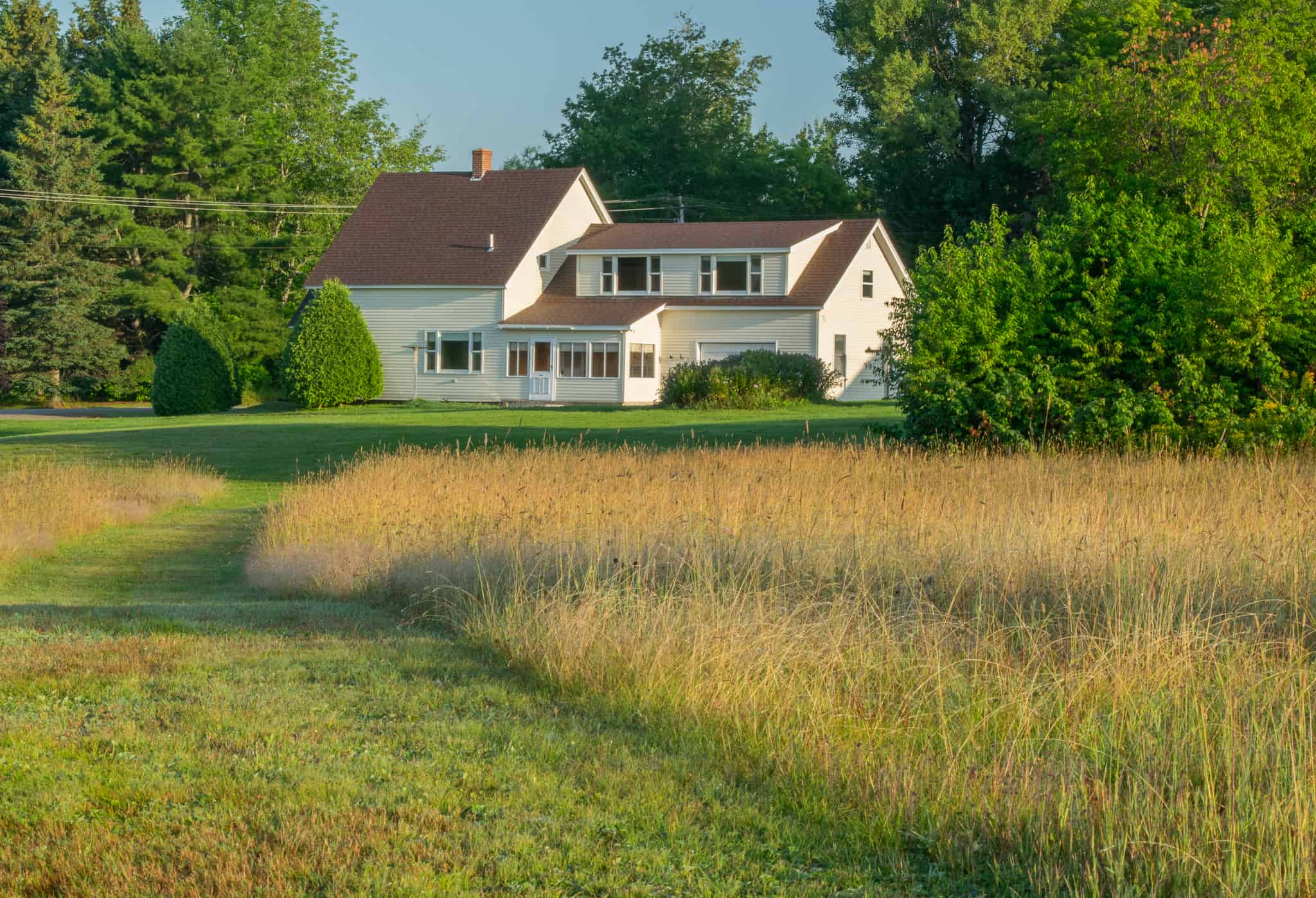 Country Homestead with 48 acres of Fields and Timber