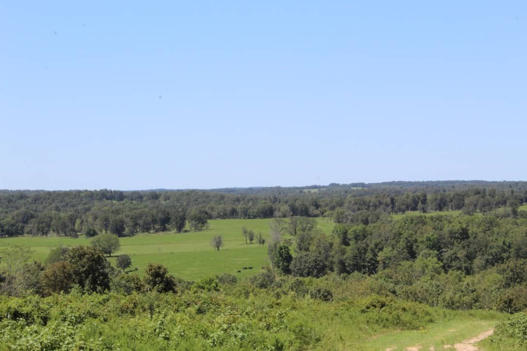 Cattle Ranch for Sale in Southern Missouri Ozarks