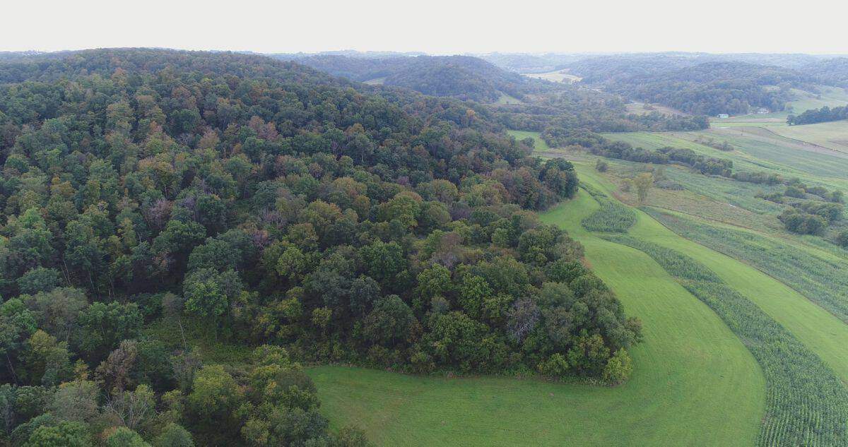 Wisconsin-Hunting and Recreational Land For Sale in Richland County