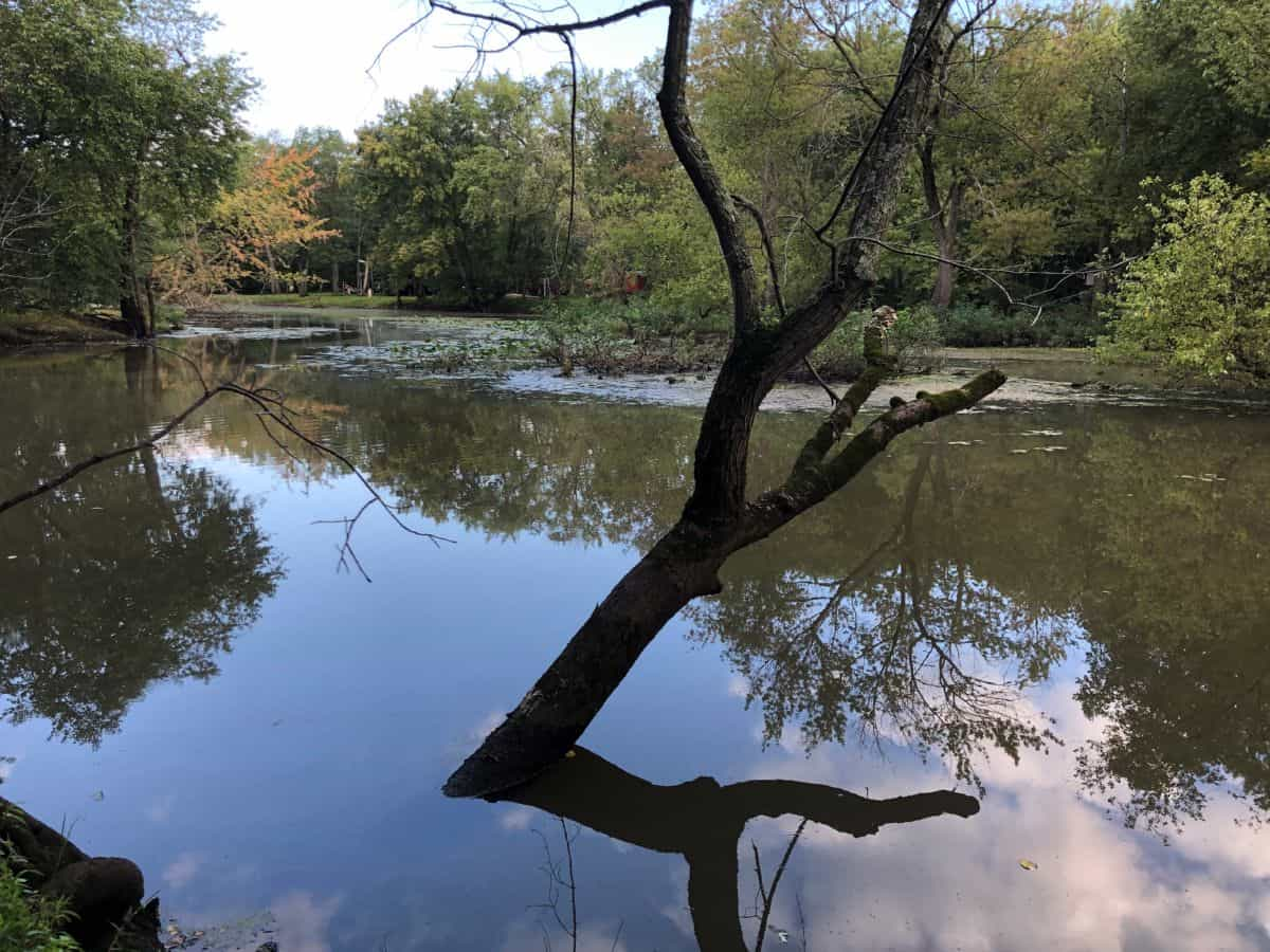 Off the Beaten Path Recreational Property Columbia County