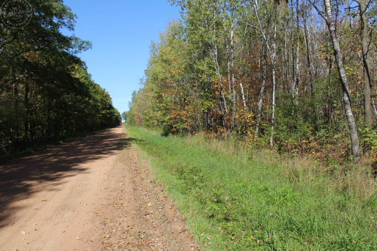 Affordable 40-Acre Parcel Located Minutes from Marshfield, WI
