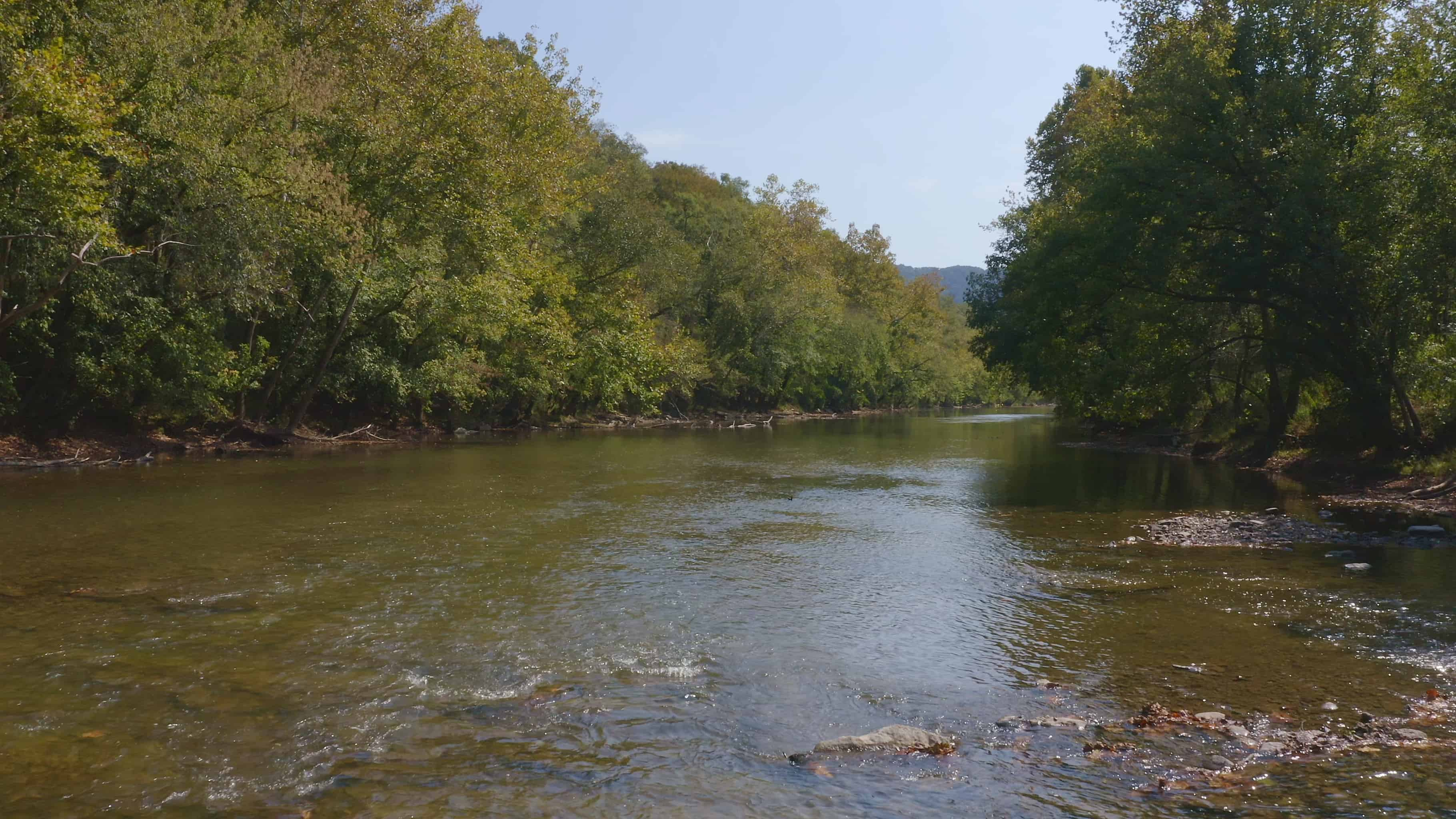 TN Hunting Property of Sale Powell River (19)