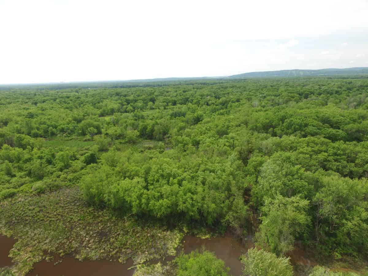 134 Acres of Wisconsin River Bottoms Columbia County