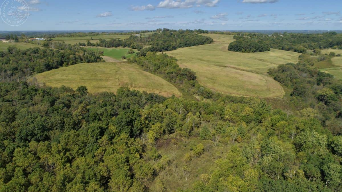 Investment Property with Giant Whitetail in Vernon County, WI
