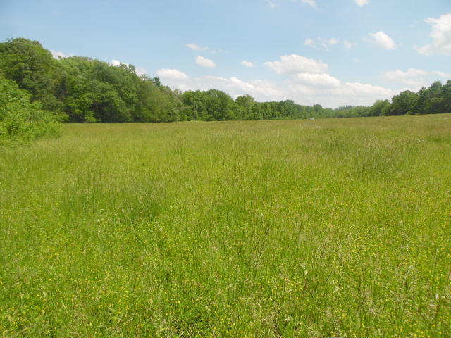 Farm / Hunting Property For Sale in Southern Missouri Ozarks