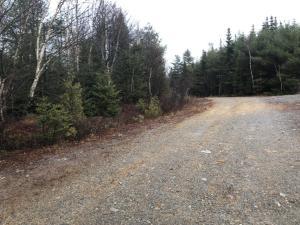 Coastal Maine Off Grid Land For Sale