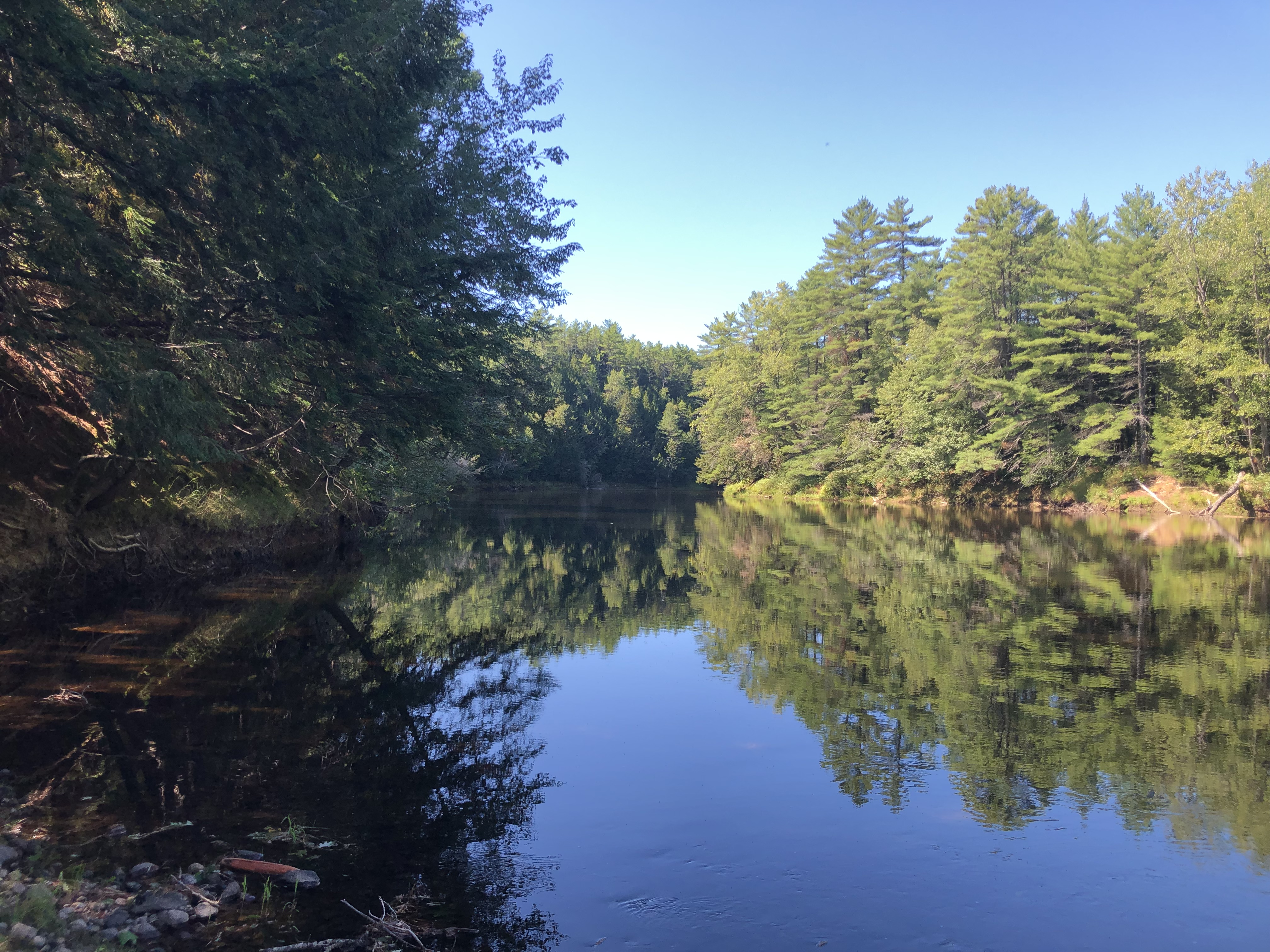 21 Acres for sale on Saco River Hiram Maine