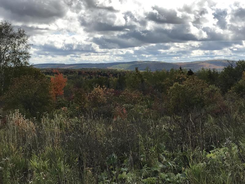 Aroostook County Maine 105 Acres Land