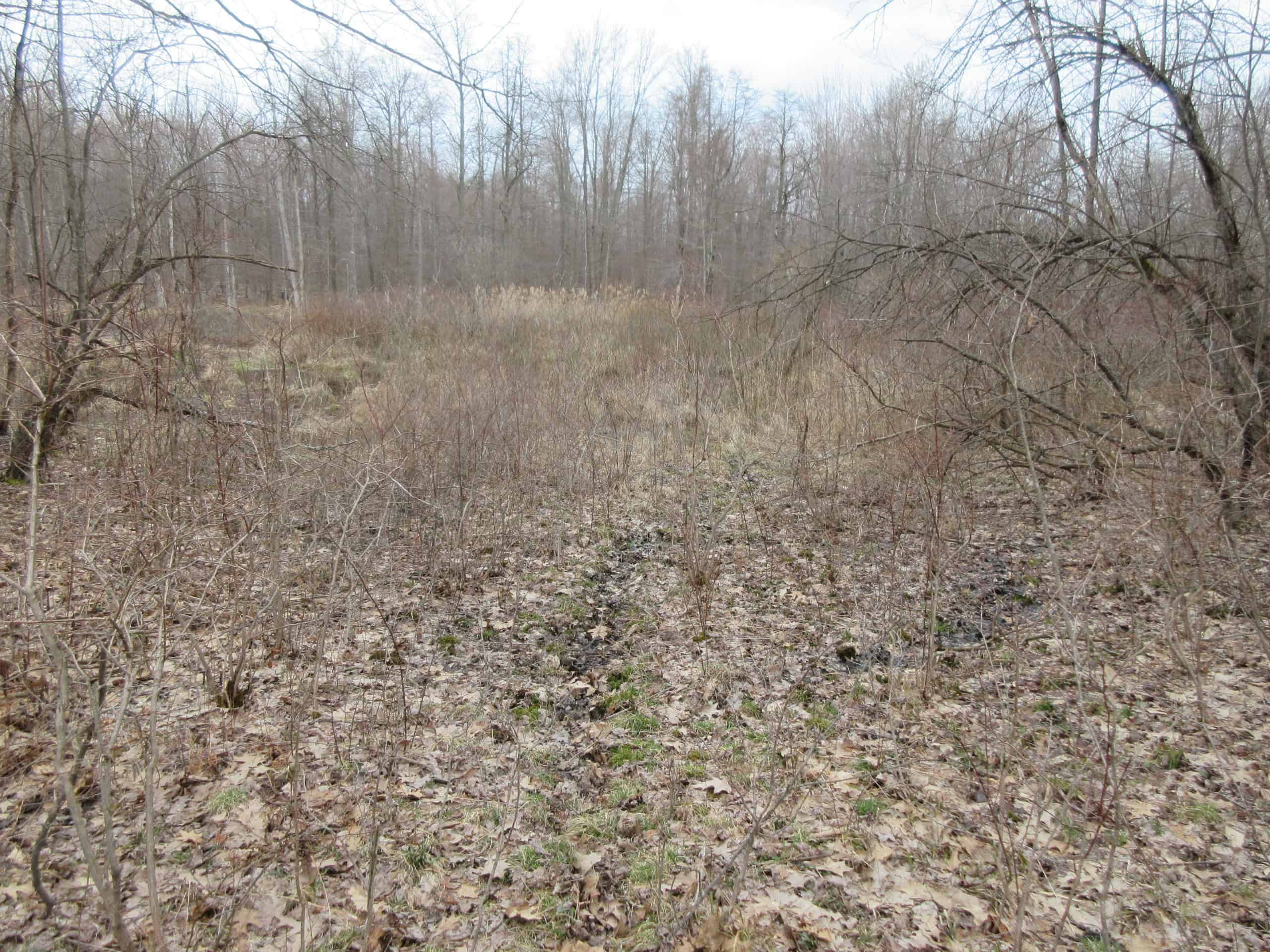 Ashtabula County Hunting Land For Sale