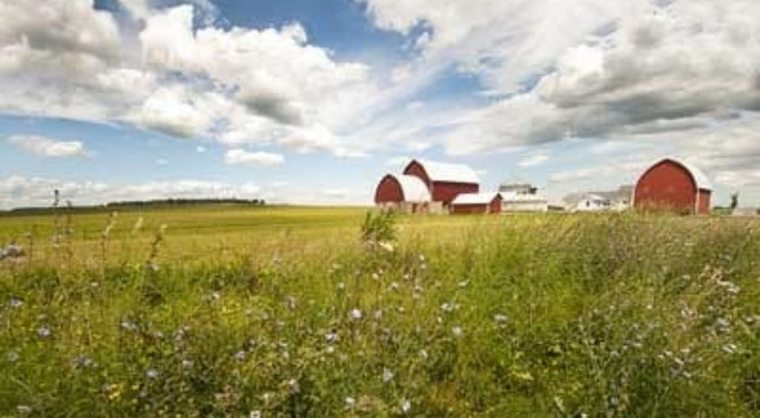 CRP 101: A WIN-WIN FOR LAND OWNERS AND CONSERVATION