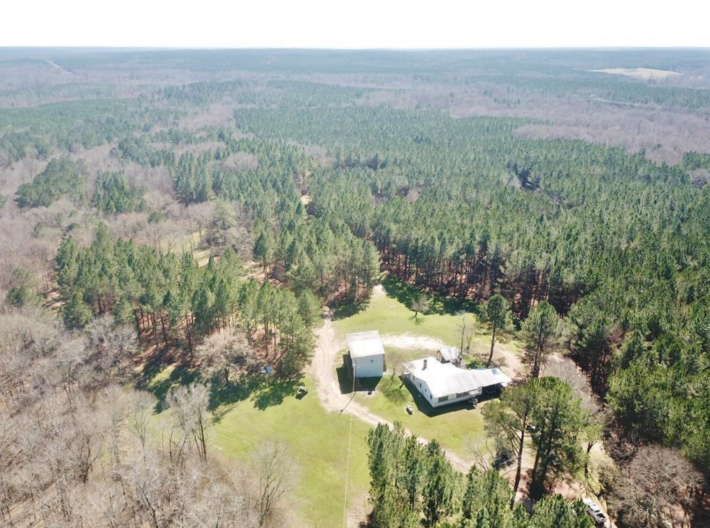 816 Acre Hunting Paradise, Camp for Sale Jefferson County MS