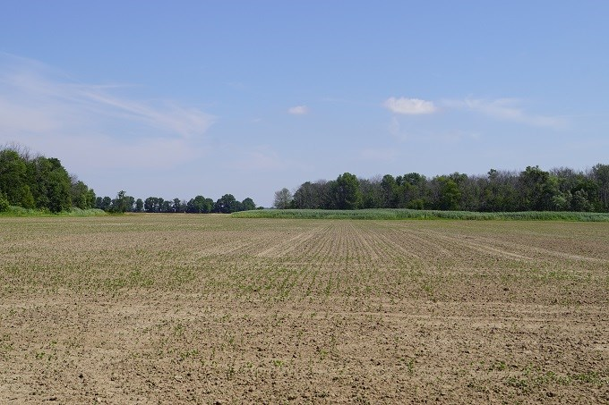 Land for Sale in Benton, Illinois