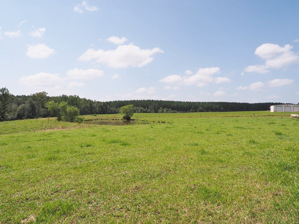 72 Acres Pasture Land for Sale, 3 Ponds, Apartment South MS