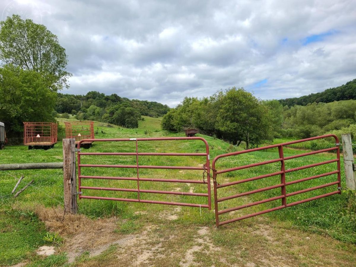 Monroe County Buildable, Horse and Hunting Property