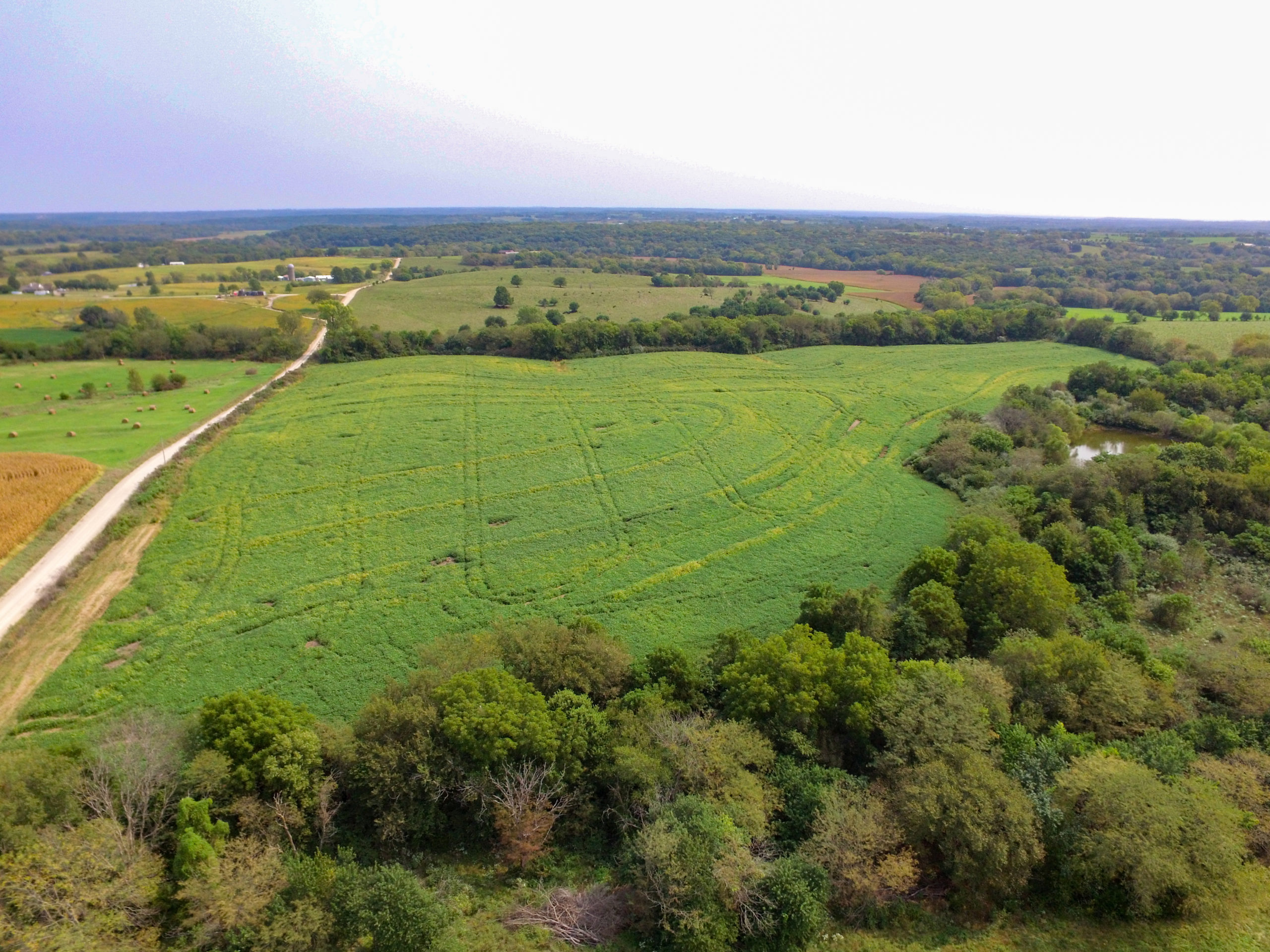 Hunting and Cropland for Sale in NE Kansas