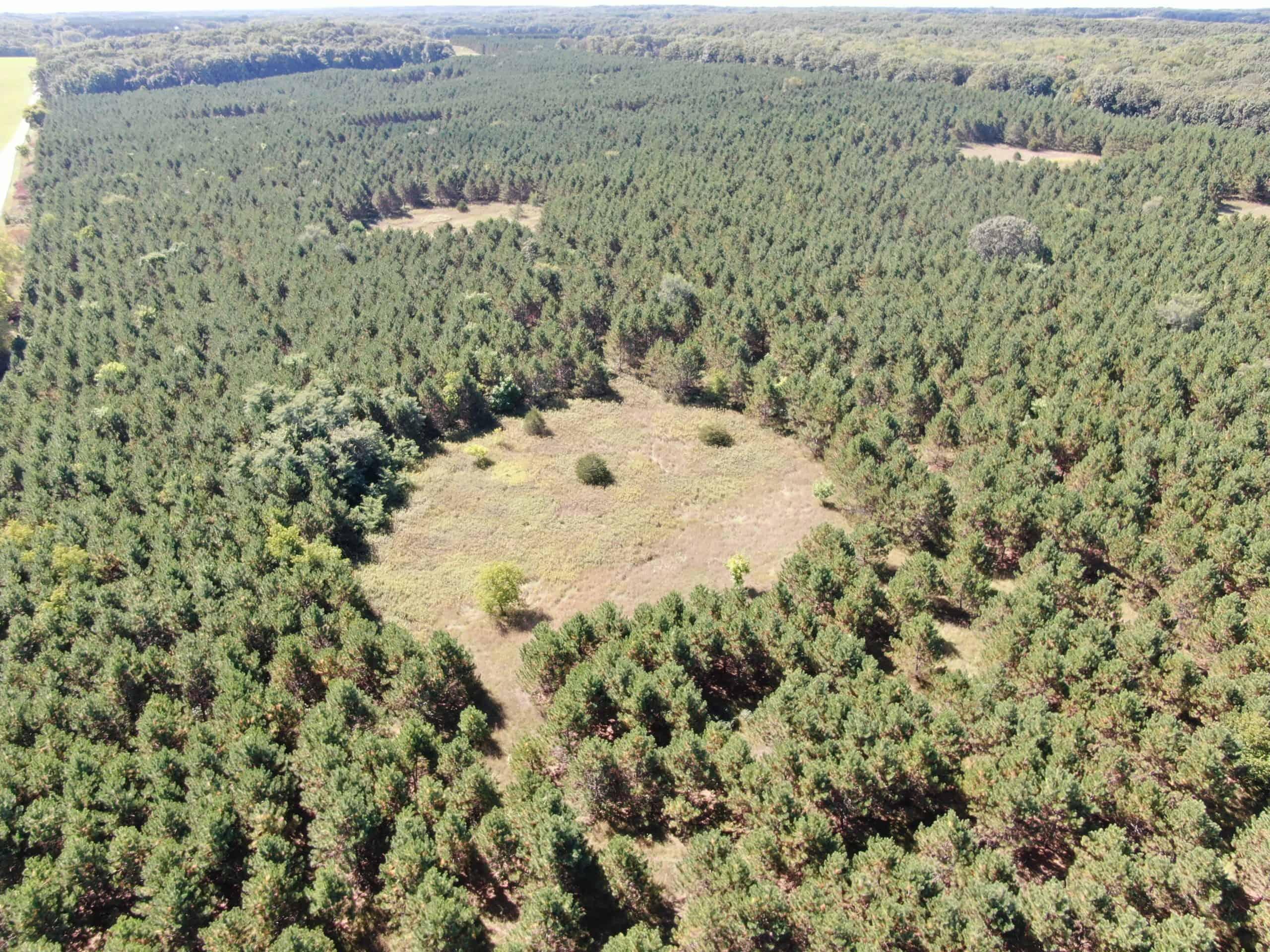 40 Ac Hunting Land Adams County