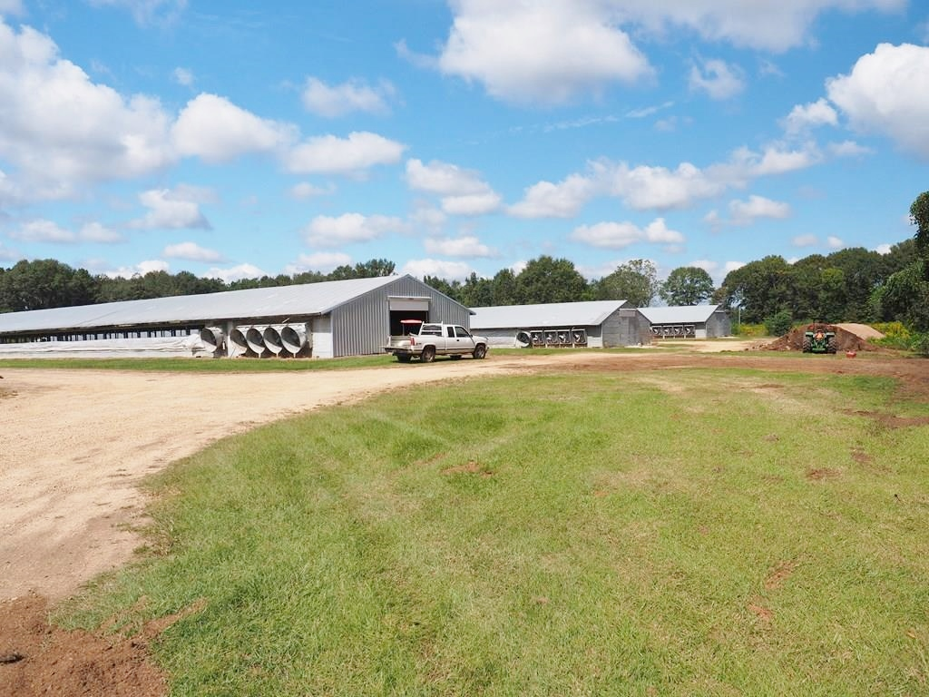 Breeder Poultry Farm, 2 Homes for Sale South MS