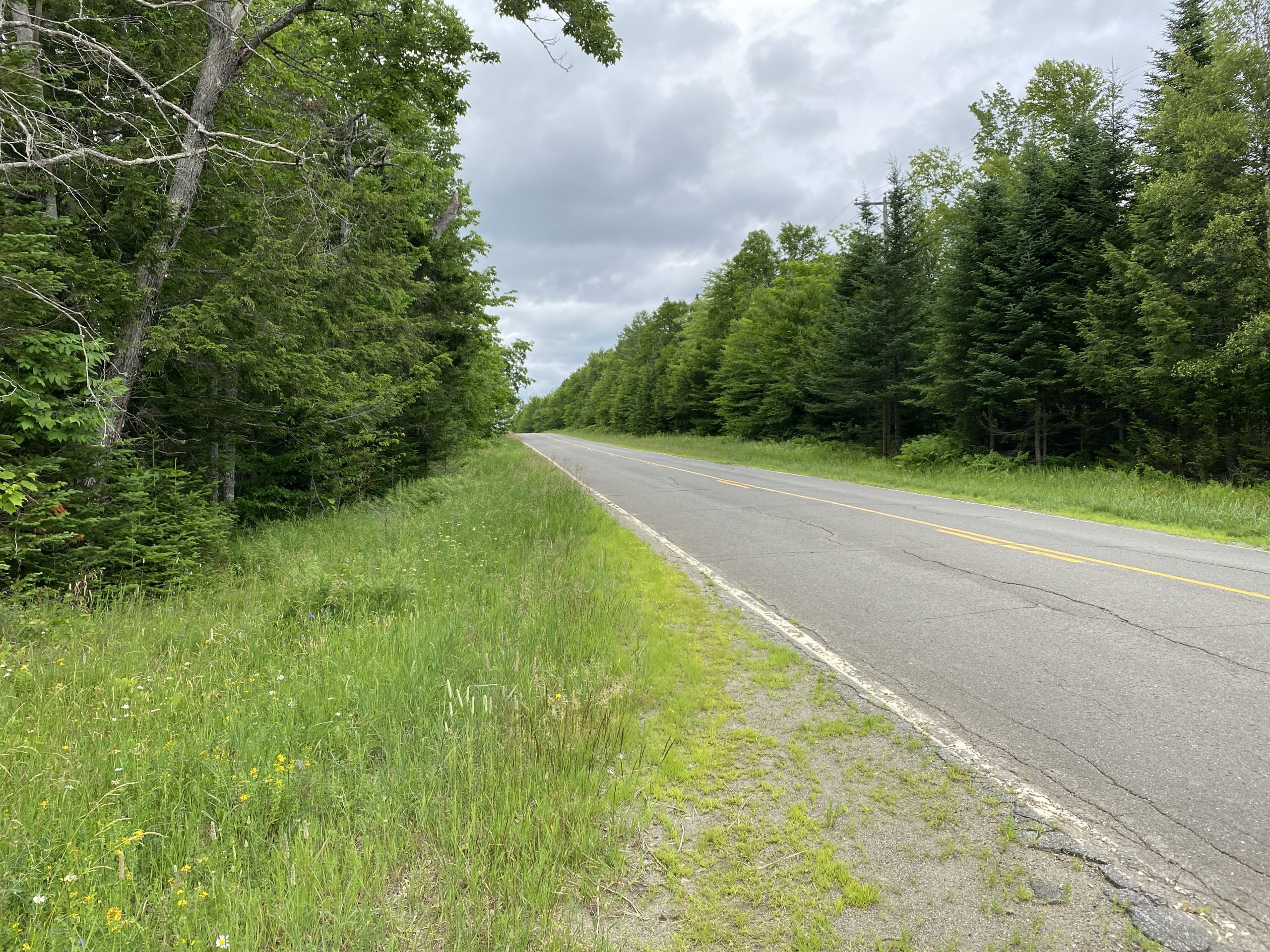 230+/- Acres Maine Land For Sale