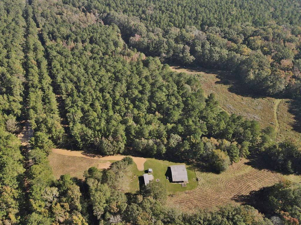 Turnkey 191 Acres and Camp For Sale in Amite County, MS