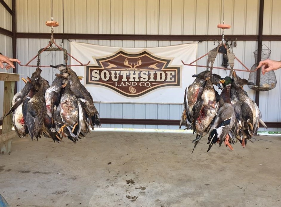 Hunting Equity Share, 4200 Acres, Camp, Jefferson County, MS
