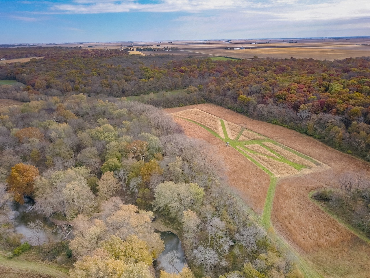 502 Acre Hunting Property in Illinois