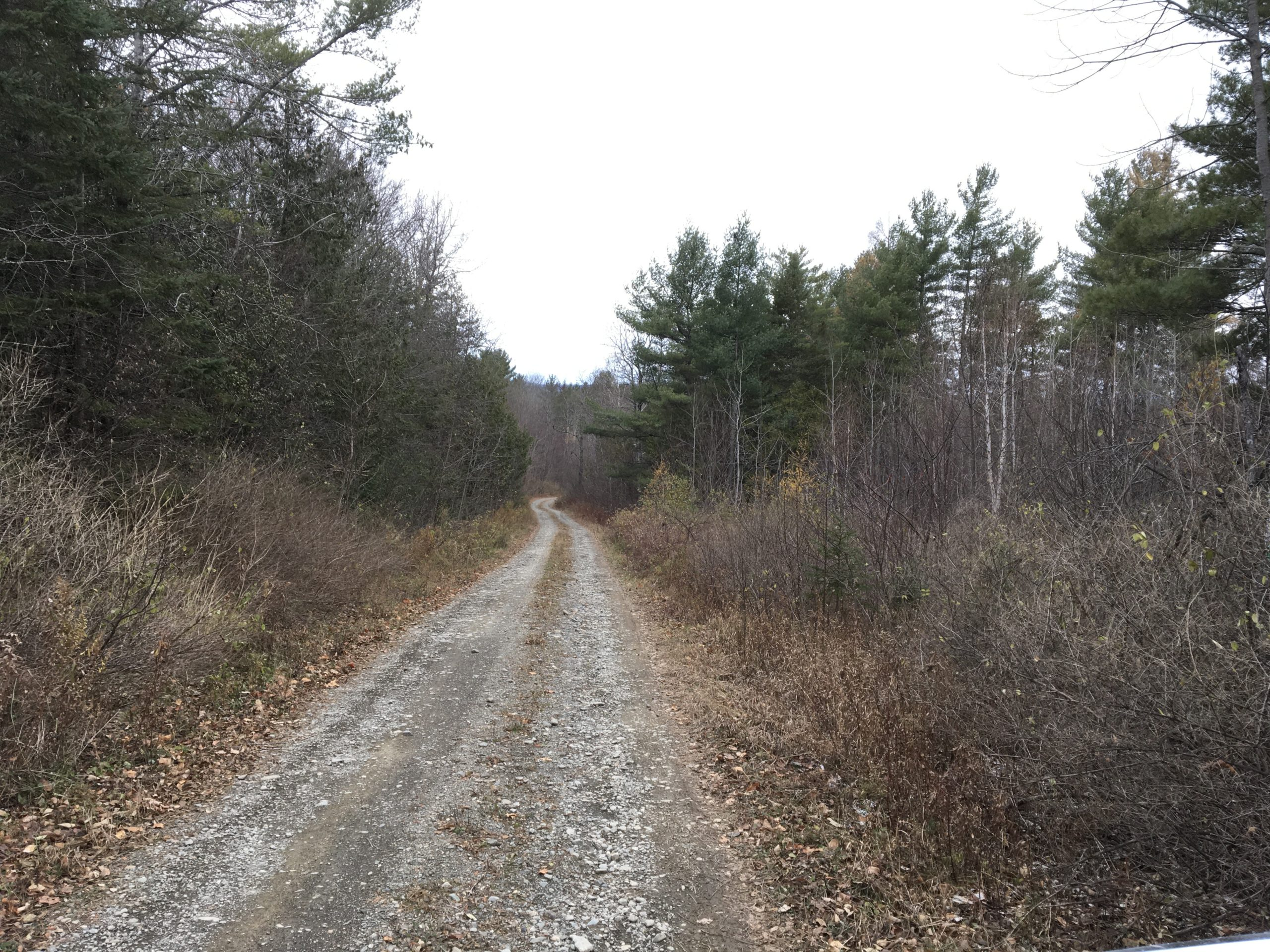 Maine Land For Homesteading and Recreation