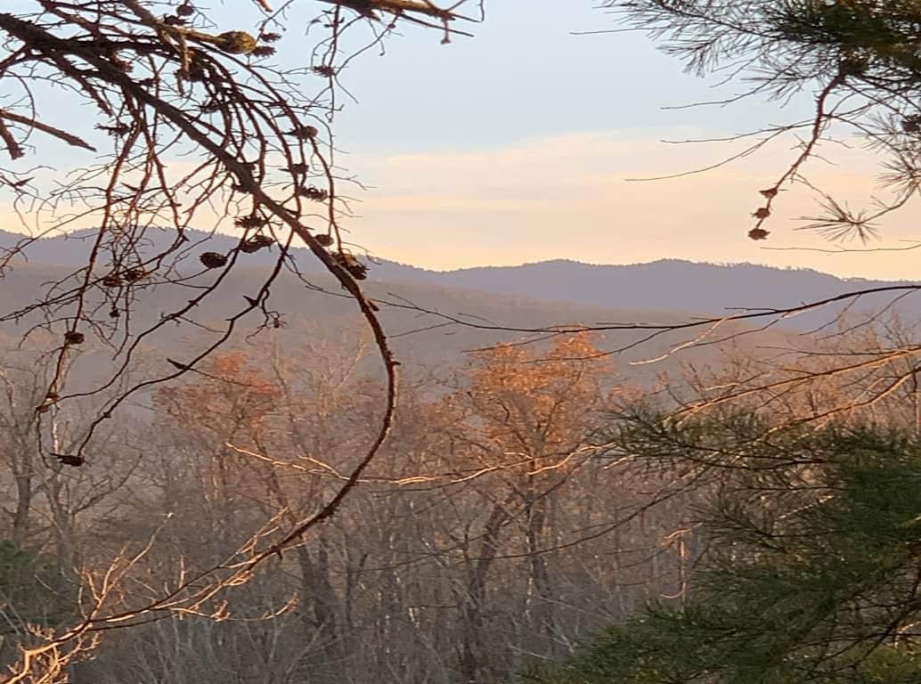 Woodland for Sale Gatlinburg Tennessee
