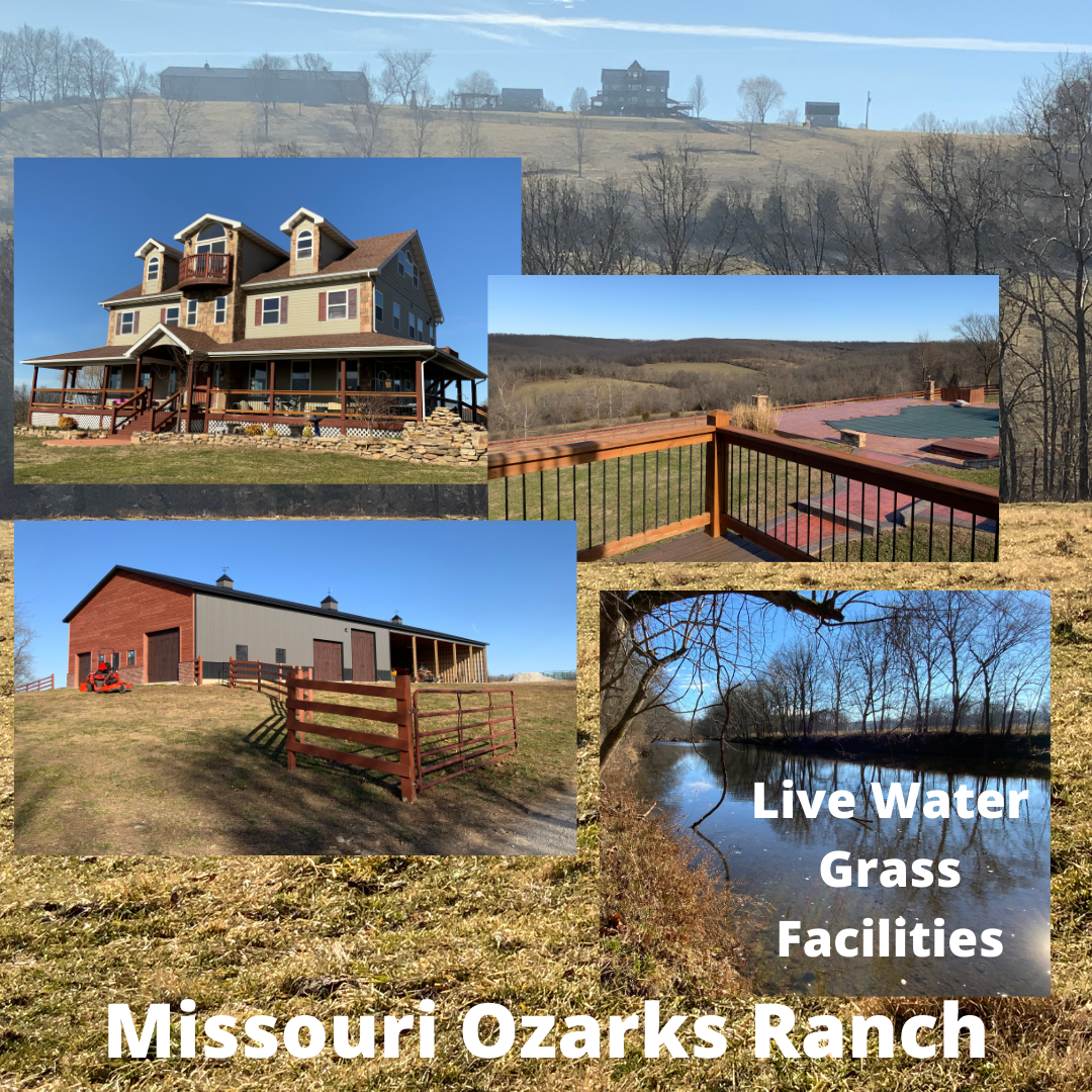 HUNTING, LIVE WATER, LUXURY HOME FOR SALE IN SOUTH CENTRAL MISSOURI