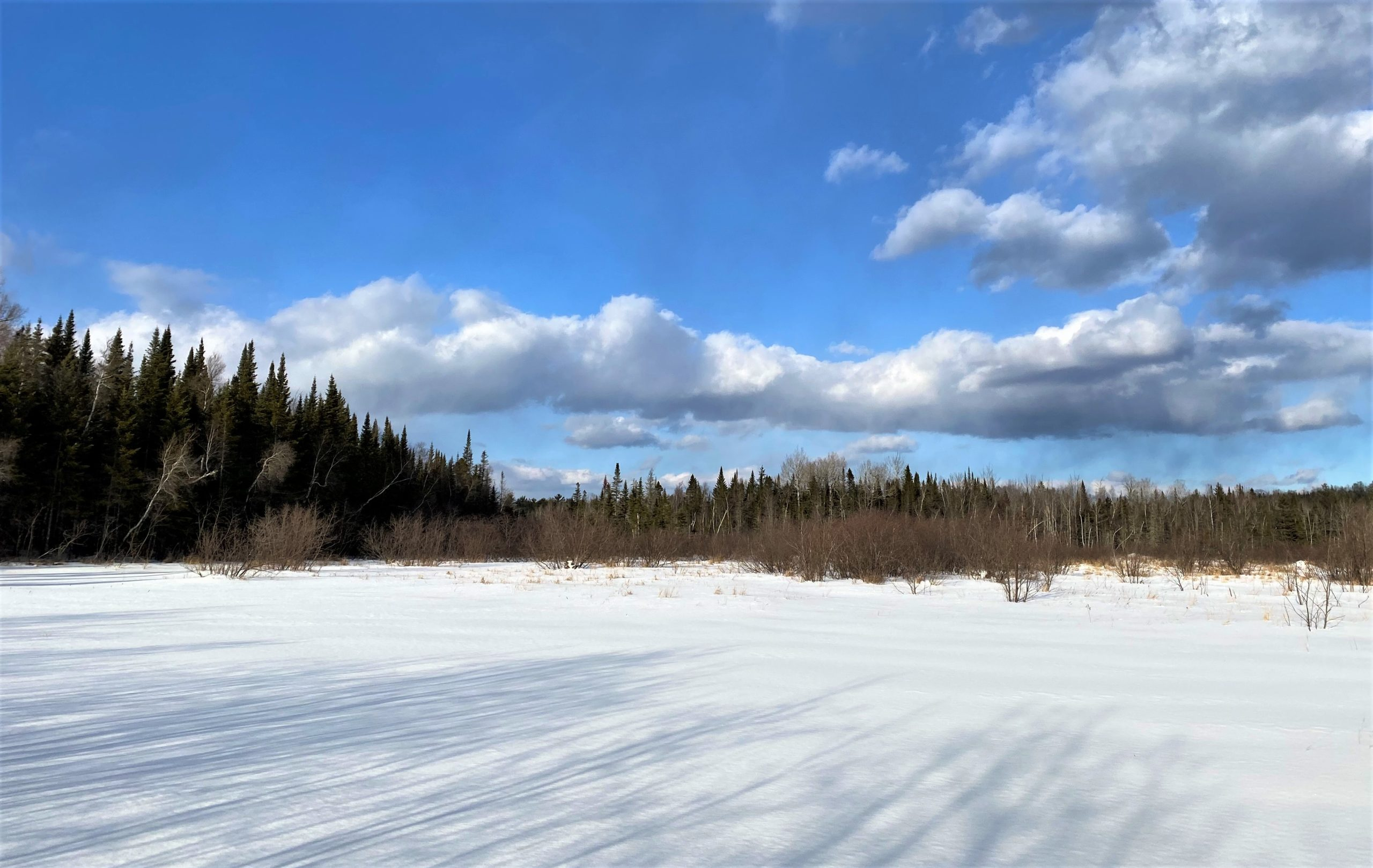 Maine Acreage For Sale