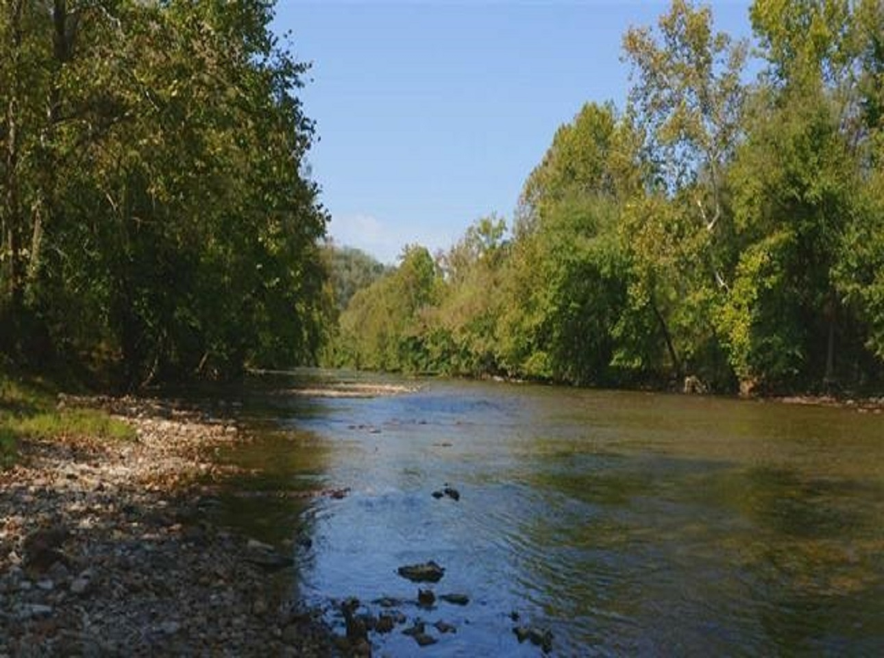 RIVERFRONT PROPERTY FOR SALE AT AUCTION CLAIBORNE COUNTY TENNESSEE