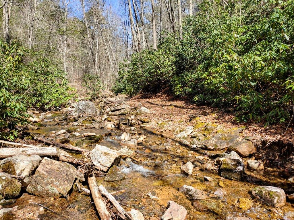 Hunting Land for Sale at Auction in Dugspur VA!