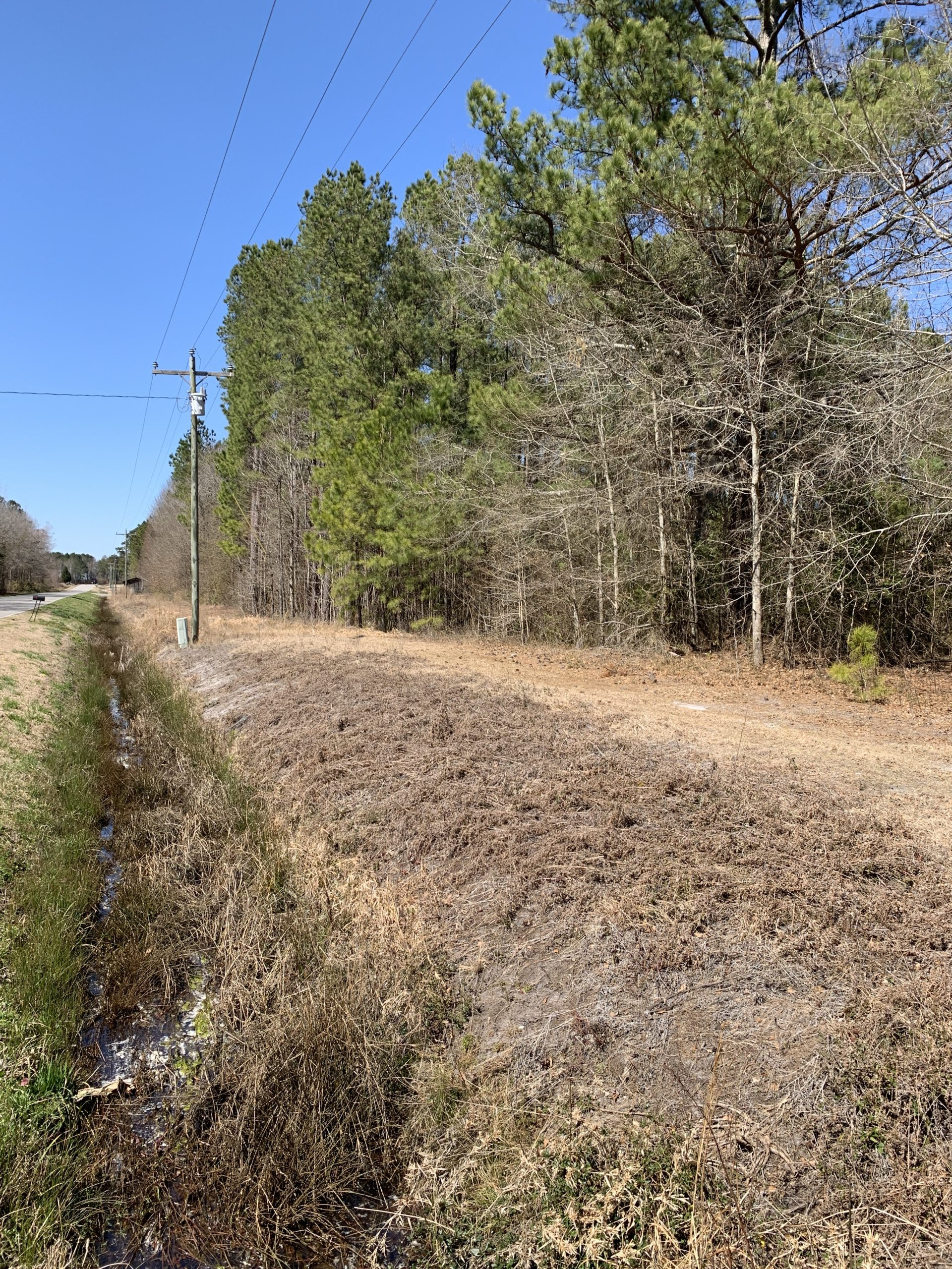 Recreational Hunting Tract for Sale Beaufort County, Pantego NC